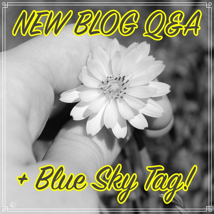 NEW BLOG Q&A + Blue Sky Tag!