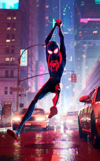 miles spiderman.jpg