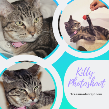 Kitty Photoshoot